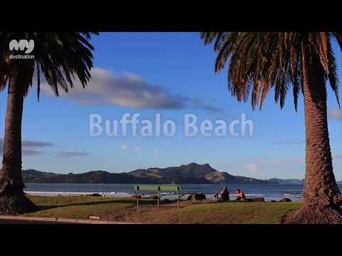 Best Beaches Of The Coromandel, New Zealand