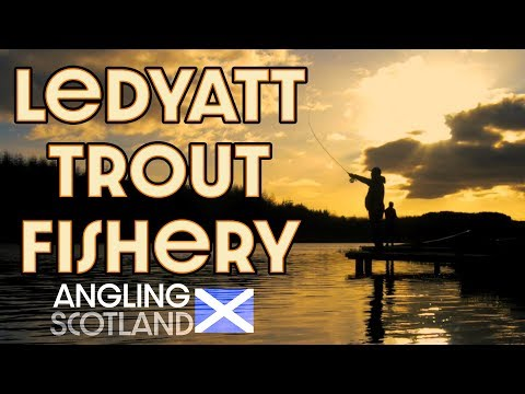 Trout Fishing Scotland | Ledyatt Trout Fishery | Angling Scotland