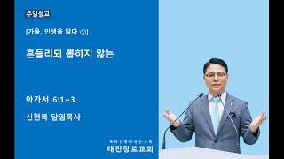 흔들리되 뽑히지 않는 │ 대전장로교회 주일설교 신현복 목사 │ 2020-10-11