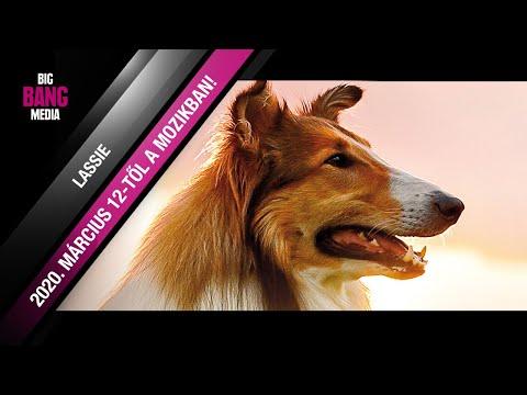 youtube filmek - Lassie hazatér (6) - Hivatalos magyar nyelvű előzetes