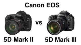 Canon EOS 5D Mark II vs 5D Mark III comparison