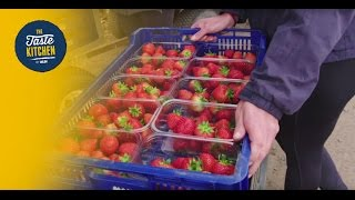 Meet the supplier – Aldi British strawberries
