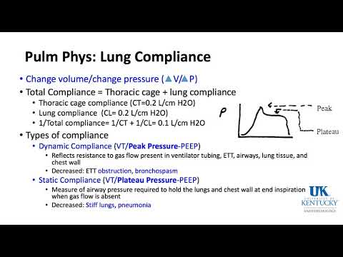 University of Kentucky Anesthesiology RespiratoryThoracic Keyword Review Part 2 of 3 (Dr. Schell)