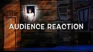 Audience Reaction Hairspray At Cork Opera House