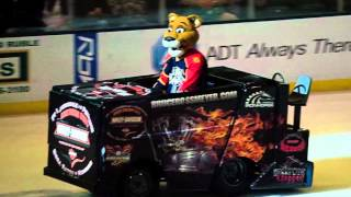 Florida Panther Mascot School List