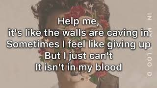 Shawn Mendes - In my blood (Lyric) mp3