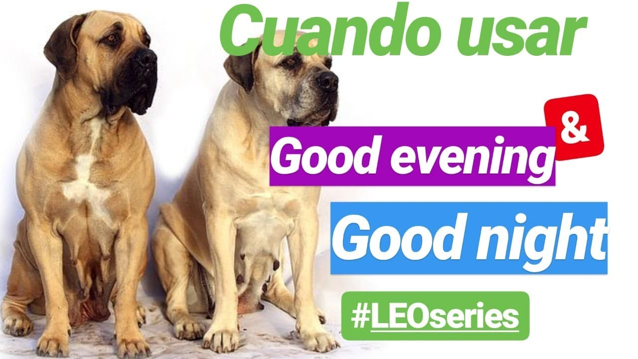 Diferencia Entre Good Evening Y Good Night Leoseries Youtube