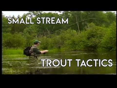 Small Stream Tactics For Trout