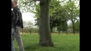 Tree, 2004
