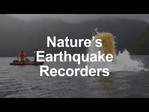 Nature's Earthquake Recorders