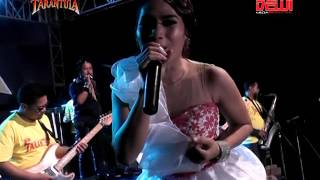 Download lagu New Tarantula Trend Music Selangkung Rong Langkung Iis Monica feat Icha Anisa MP3