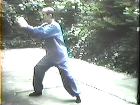 Franklin Kwong Performing the Yang Tai Chi Form