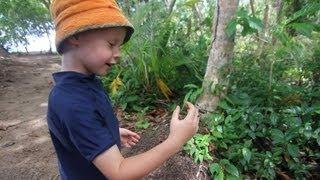 Boy Holding a Banana Spider