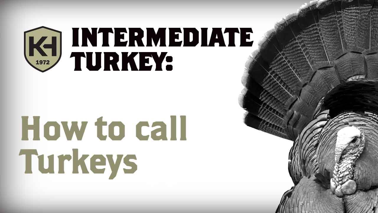 How to call from Turkey