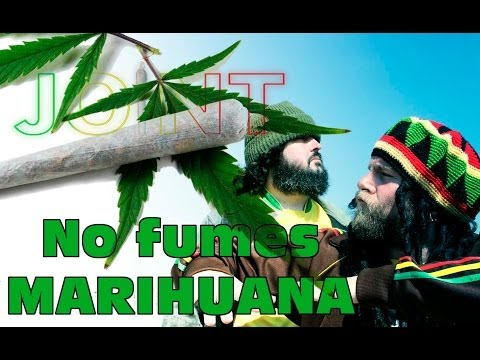JOINT- NO FUMES MARIHUANA