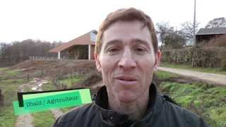L'Elevage Ovin en Limousin