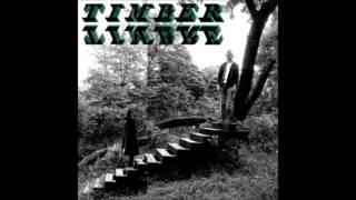 Timber Timbre ----- Demon Host (LYRICS) HD