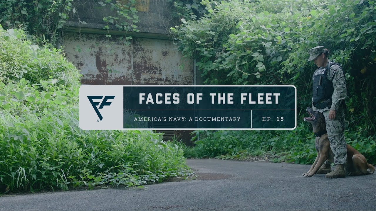 Faces of the Fleet