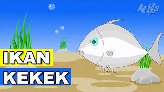 lagu kanak kanak alif mimi ikan kekek animasi 2d
