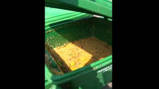 Extreme Maggot Infestation Monmouth County New Jersey Pest Control
