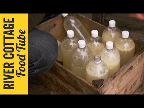 Homebrew Ginger Beer | Steve & John
