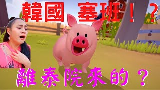 『 Apple Arcade Hogwash 』#2 原來塞班是隻韓國豬 ? 離泰院跑出來的豬 ? 多人疯狂农场混战遊戲!  2020手遊推薦與好友在線決戰!