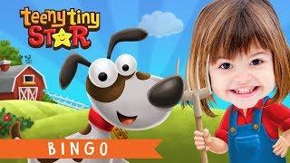 Bingo Köpek Şarkı Tekerleme | Kreş Şarkı Sözleri | Çizgi film Animasyon İle Çocuklar için Tekerlemeler
