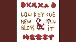 Low Key Cue New Tan Bloss It