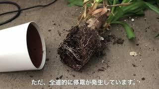 北海道地震 現状報告