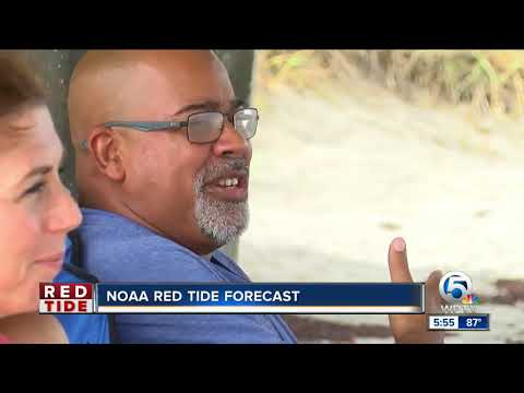 NOAA red tide forecast
