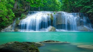 Baixar Meditation Music, Studying Music for Concentration, Music for Stress Relief, Brain Power, ☯3334