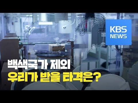 백색국가 제외가 한국 경제에 미칠 영향은? / KBS뉴스(News)
