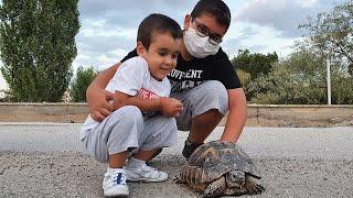 Bisiklet ile Gezerken Kaplumbağa Gördük Su Verdik Sevdik