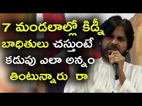 Pawankalyan UNSEEN Ferocious Speech On Kidney Uddanam Issue Against AP Government || TFPL NEWS