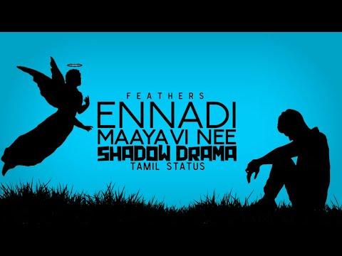 Vadachennai | Ennadi Maayavi Nee | Shadow Drama | Tamil status | Dhanush | Sid Sriram | Feathers