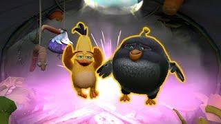Chuck & Bomb Hatch! | Angry Birds Evolution