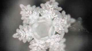 canada national anthem water crystal