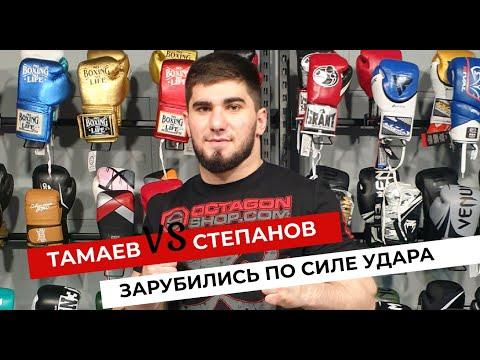 🔥 Тамаев VS Степанов зарубились по силе удара 👊🏼