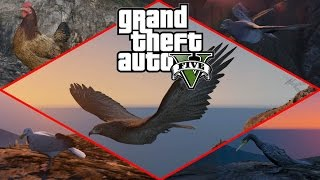 Grand Theft Auto V - Play as Birds (Peyote) [1080p] TRUE-HD QUALITY