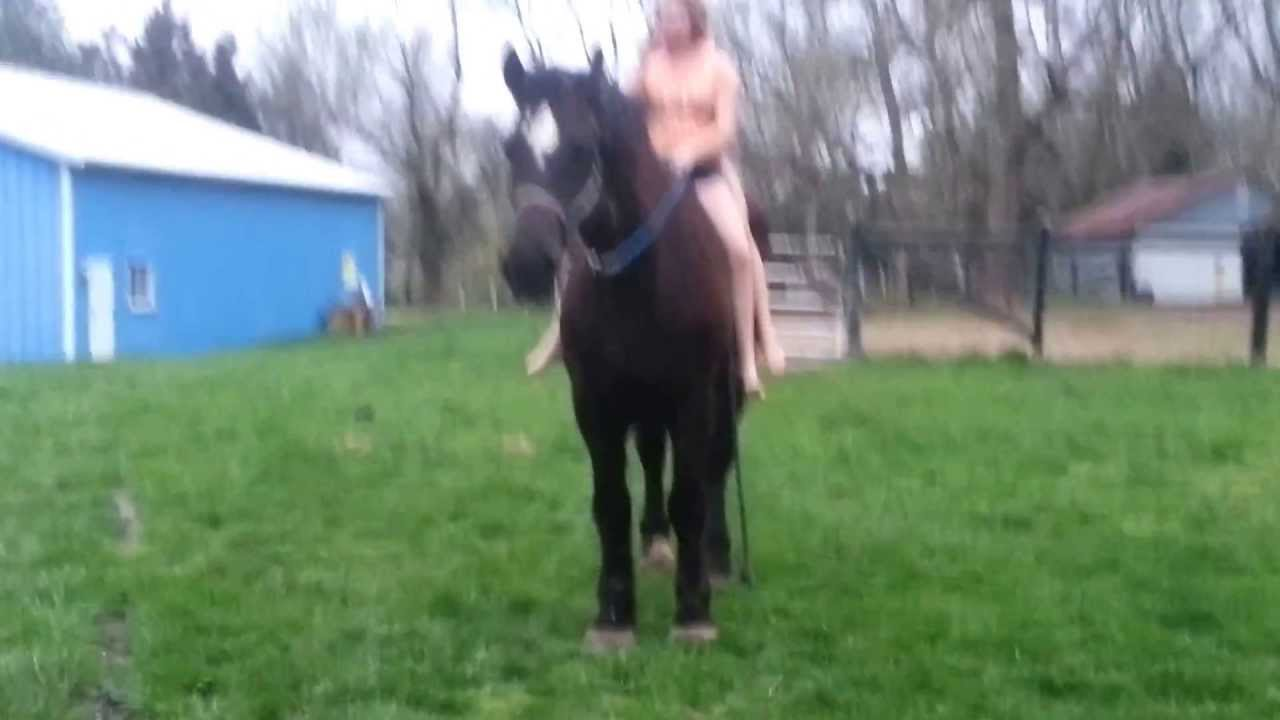 One horse guys two Video Gallery