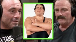 Joe Rogan - Jake The Snake on Andre the Giant