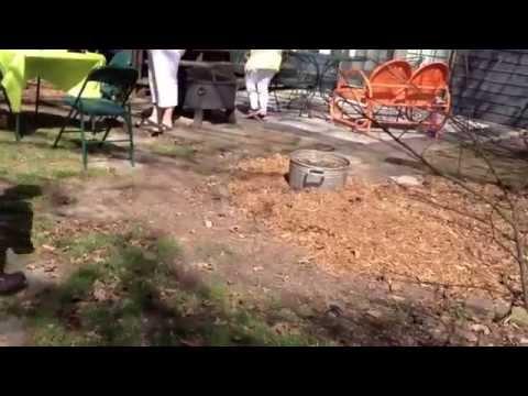 Adult Easter Egg Hunt Jacksonville Illinois