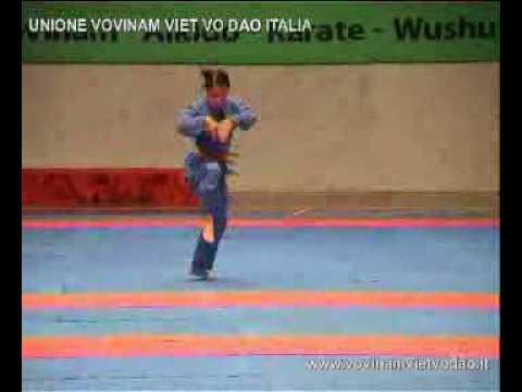 Vovinam Việt Võ Đạo - Long Hổ Quyền