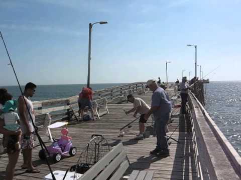 Virginia Beach Fishing Pier Bluefish Run