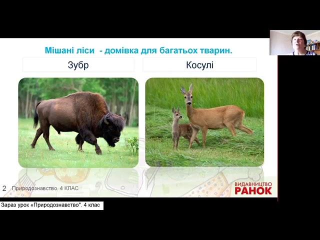 4 клас. Природознавство.  Подорож природними зонами України.