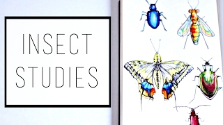 Drawing Insects · 30 Ways to Fill a Sketchbook · SemiSkimmedMin
