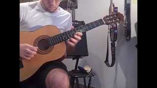 Pierce the Veil - Bulls in the Bronx Classical Guitar Cover (Solo)