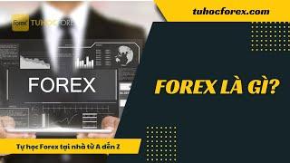 Forex Phần 2: Forex Là Gì   Forex