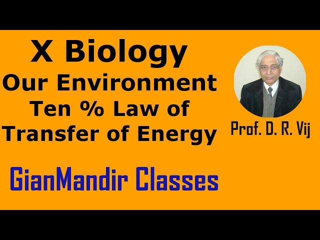 X Biology | Our Environment | Ten % Law of Transfer of Energy by Manjit Ma'am
