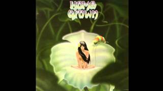 From the Home Grown I album, released on KKUA Records in 1976.